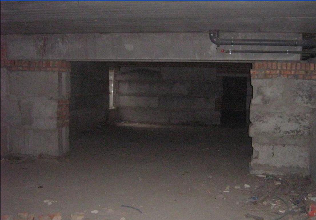 Нежитлові приміщення та основні засоби, а саме: Нежитлові приміщення: 1. підвал - 57,7 кв. м., 2. підвал - 47,2 кв. м., 3. підвал  - 16,6 кв. м., 4. підвал - 58,6 кв. м., 5. підвал  - 46,3 кв. м., 6. підвал - 56,6 кв. м., 7. підвал - 46,1 кв. м., загальною площею 329,1 кв. м.в житловому будинку літ. Ф-4, що розташовані за адресою: Миколаївська область, м. Миколаїв, вул. Скороходова, буд. 92/3; реєстраційний № 22450769, інвентарний № 044001 Основні засоби в кількості 28 од., що знаходяться в м. Київ, вул.Бажана,12